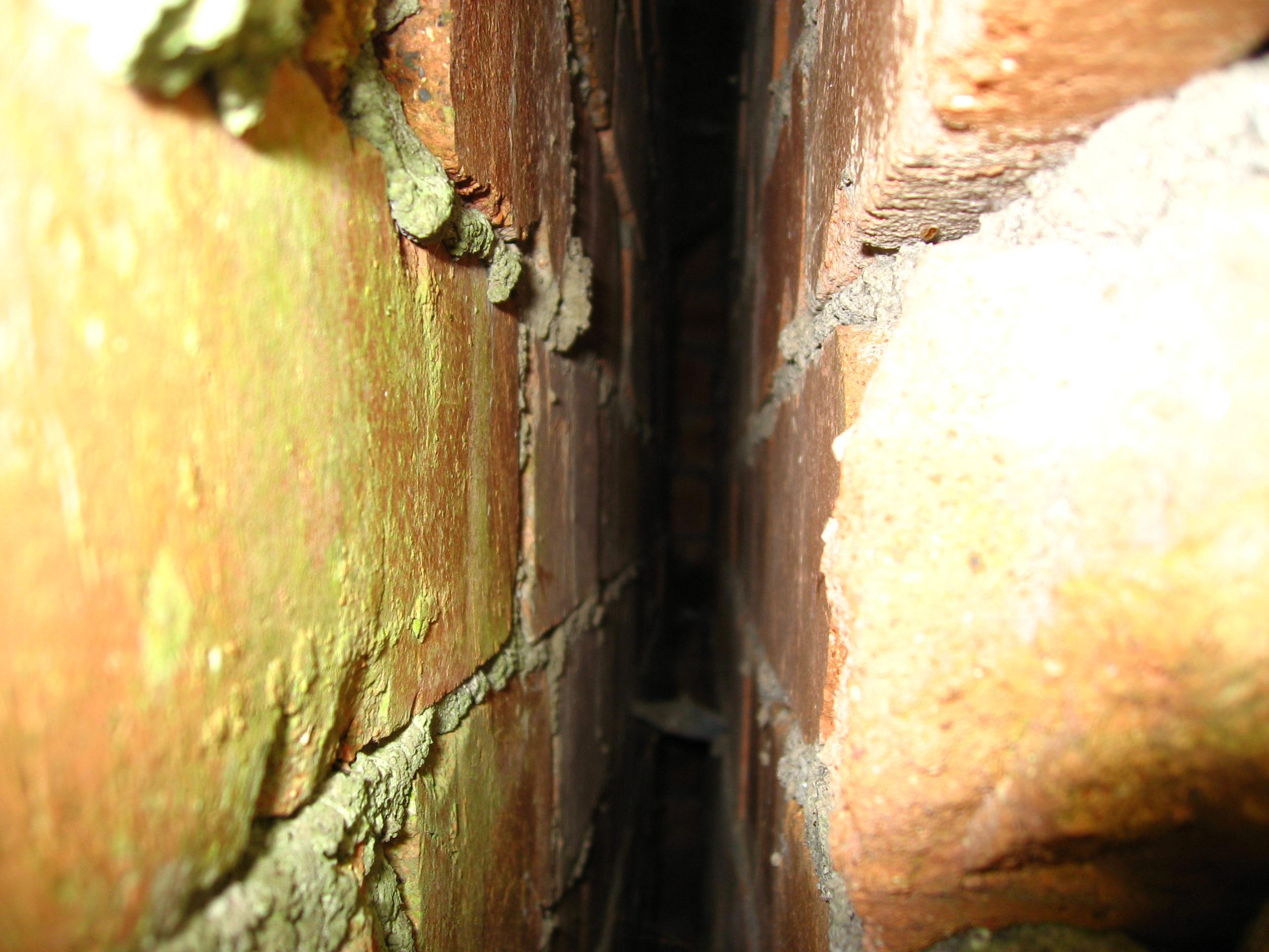 Aussenwanddämmung vor der Befüllung - Der Blick mit dem Endoskop in das zweischalige Mauerwerk